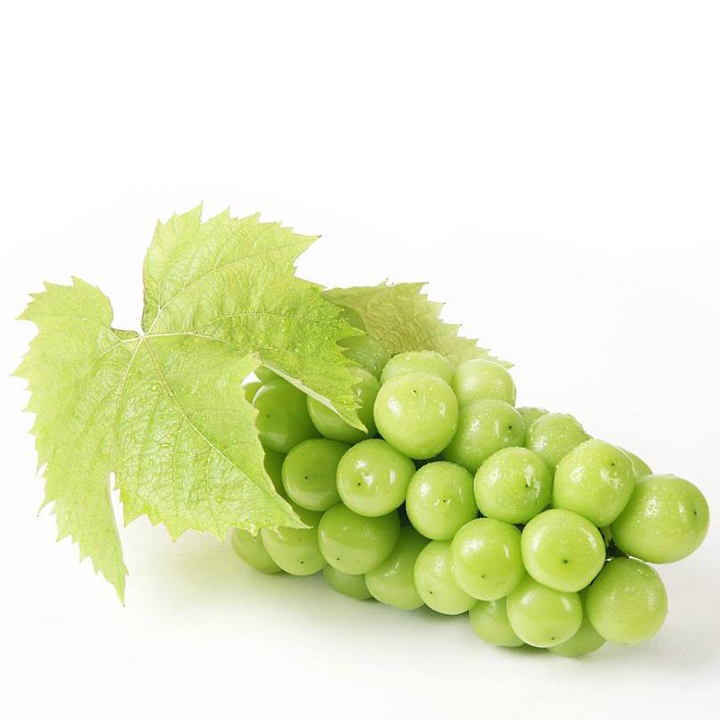 Korean green milky grape