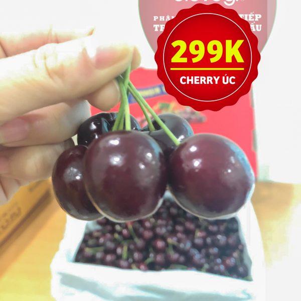 Trái Cherry Úc nhập khẩu ! Đã ngon hơn cherry Mỹ , giá lại mềm khó tìm(1)
