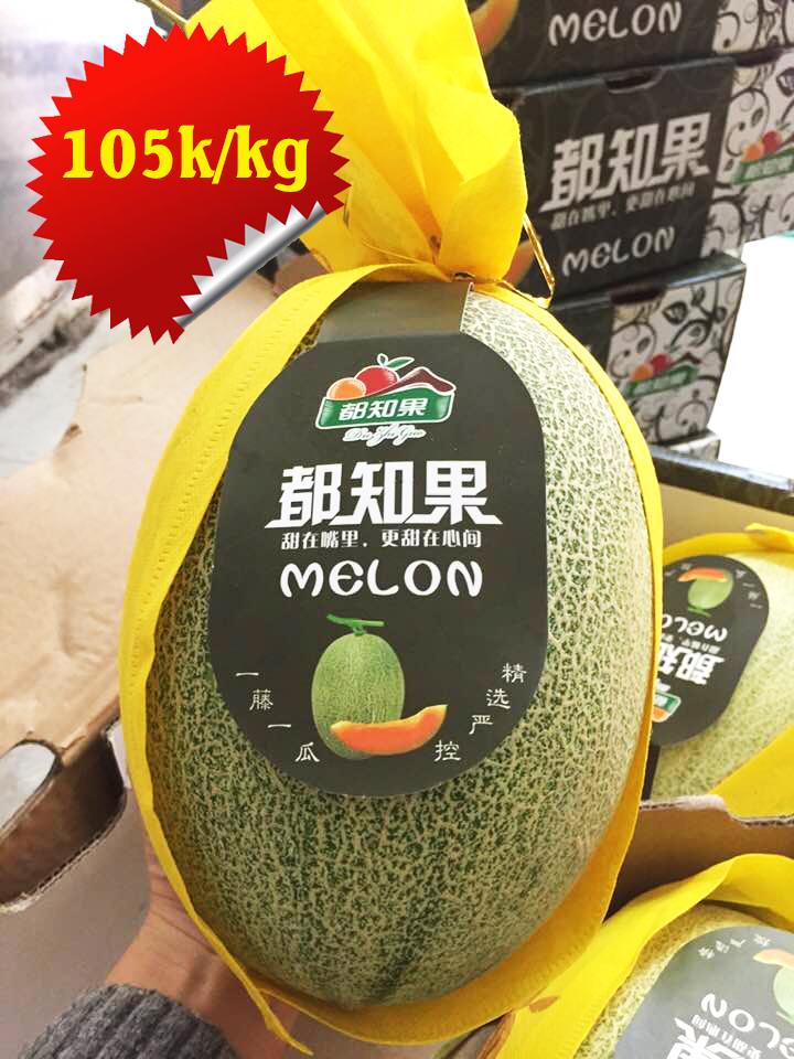 Dưa xanh lưới Đài Loan