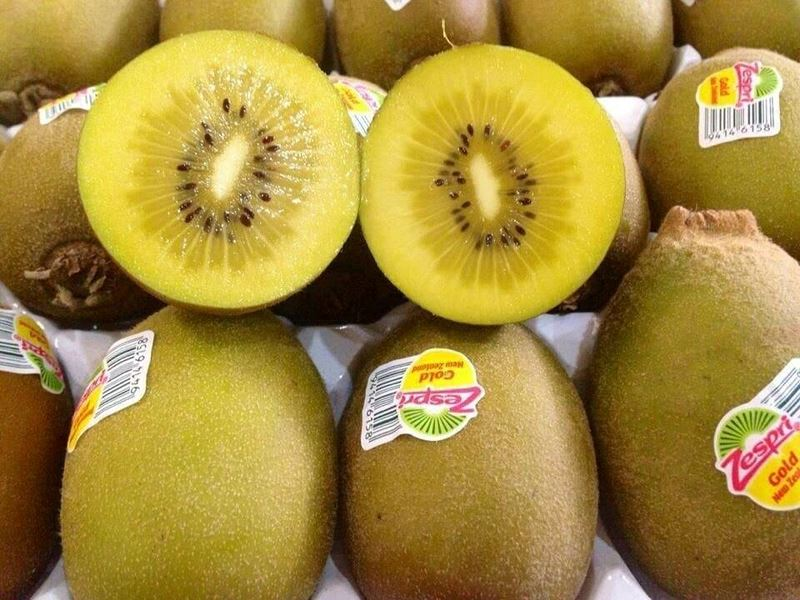 Kiwi vàng New Zealand – Zespri