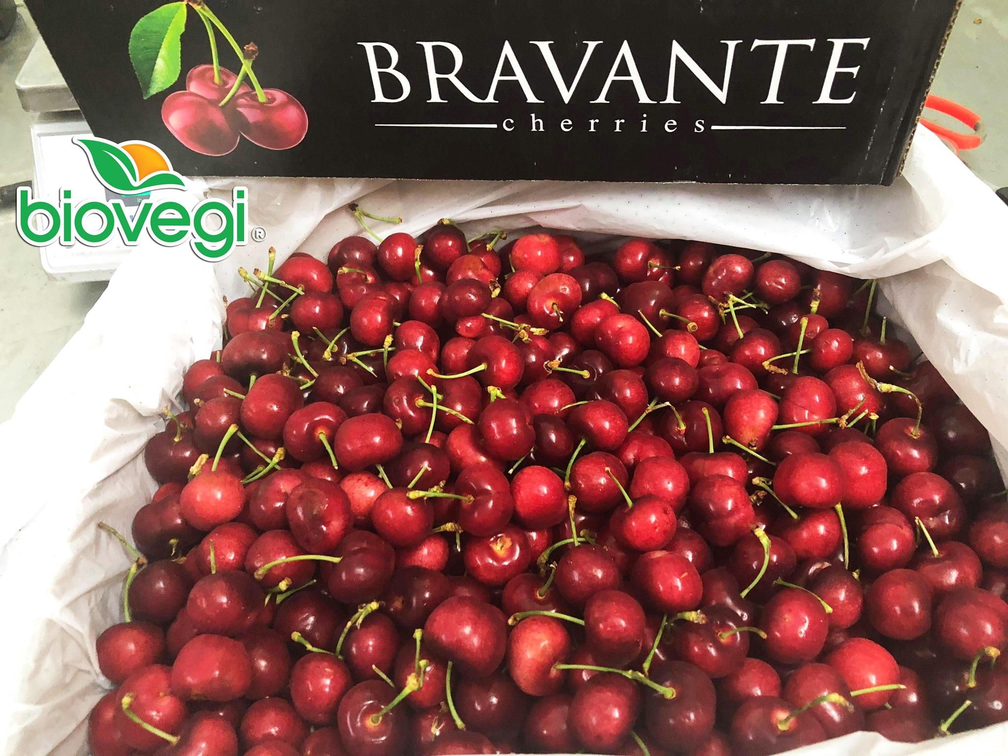Cherry Mỹ Bravante