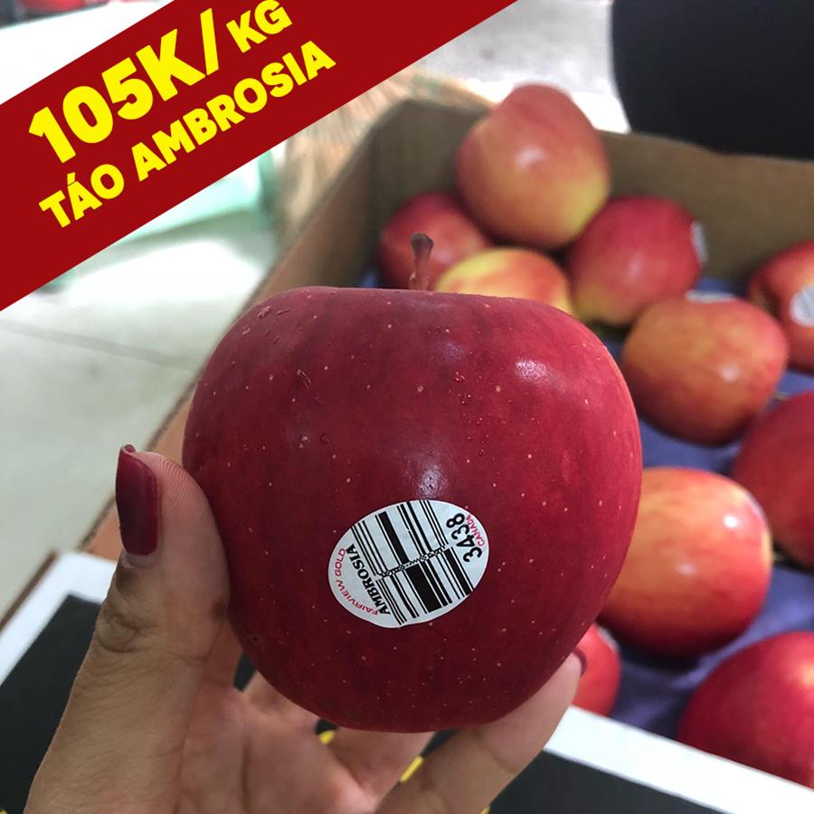 Táo Ambrosia Canada sz bé #105k/kg